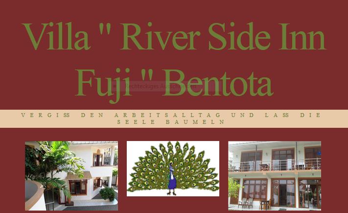 River Side Inn Fuji 2