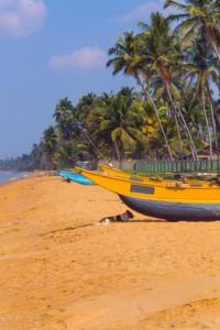 Sri Lanka, Wadduwa