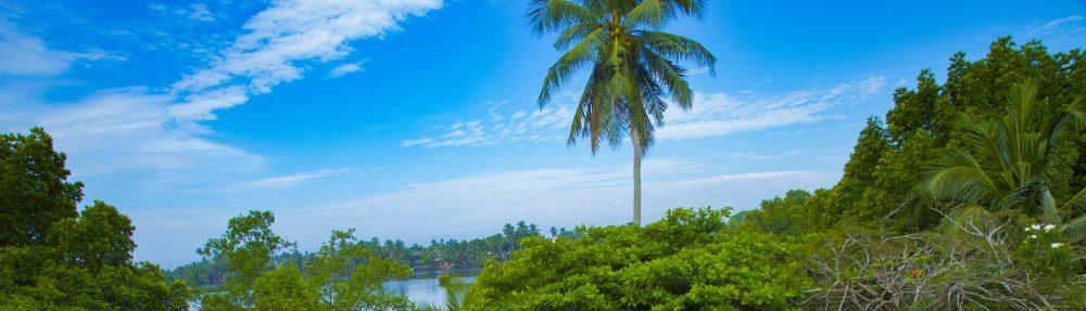Sri Lanka –  Eine Insel zum Verweilen